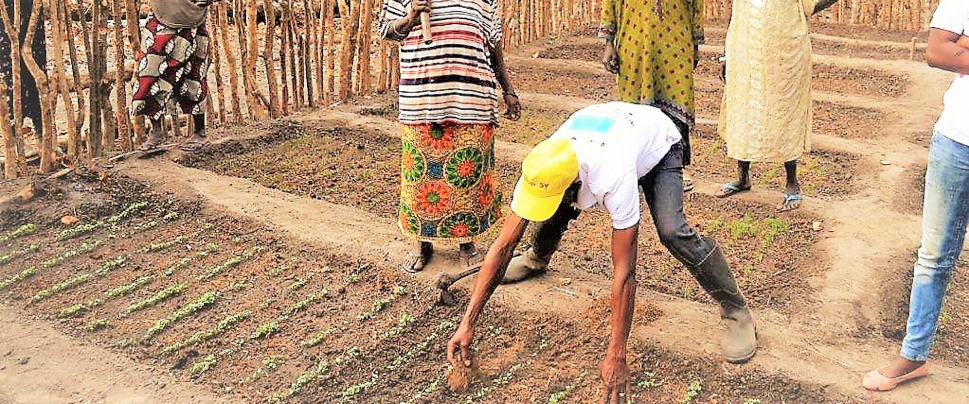 Gabu orto donne semenzaio Mani Tese 2017