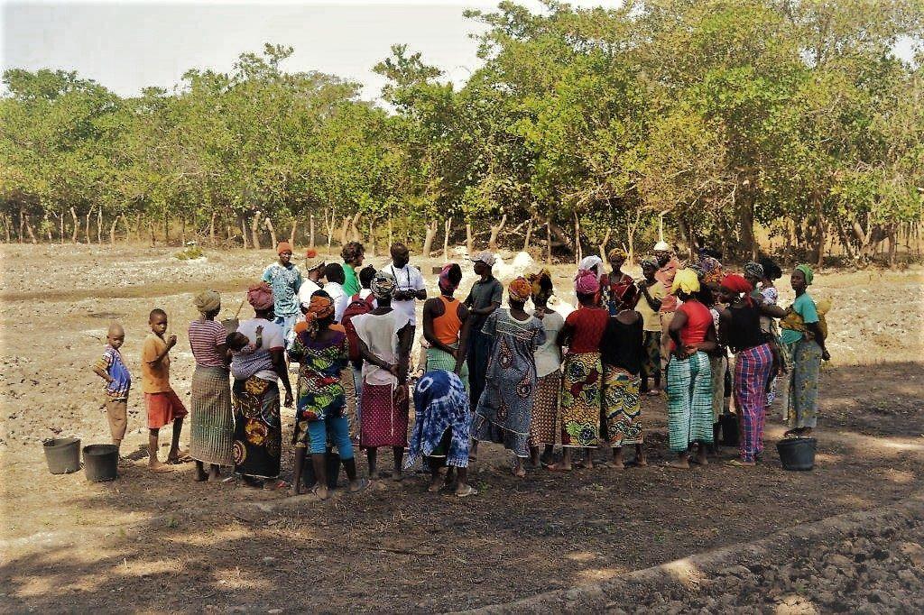 Matteo_Anaclerio_Aiutali_a_non_fuggire_Guinea_Bissau_Gabu_orto_donne_Mani_Tese_2017