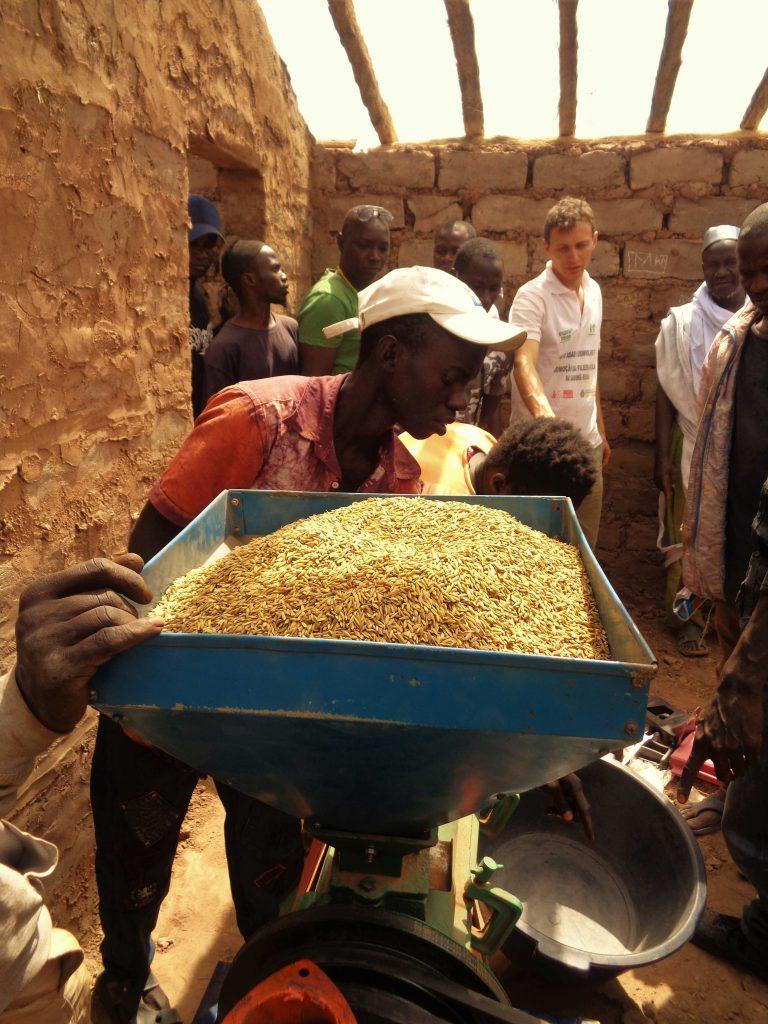 riso lavorato macchine villaggio Guinea Bissau Mani Tese 2017