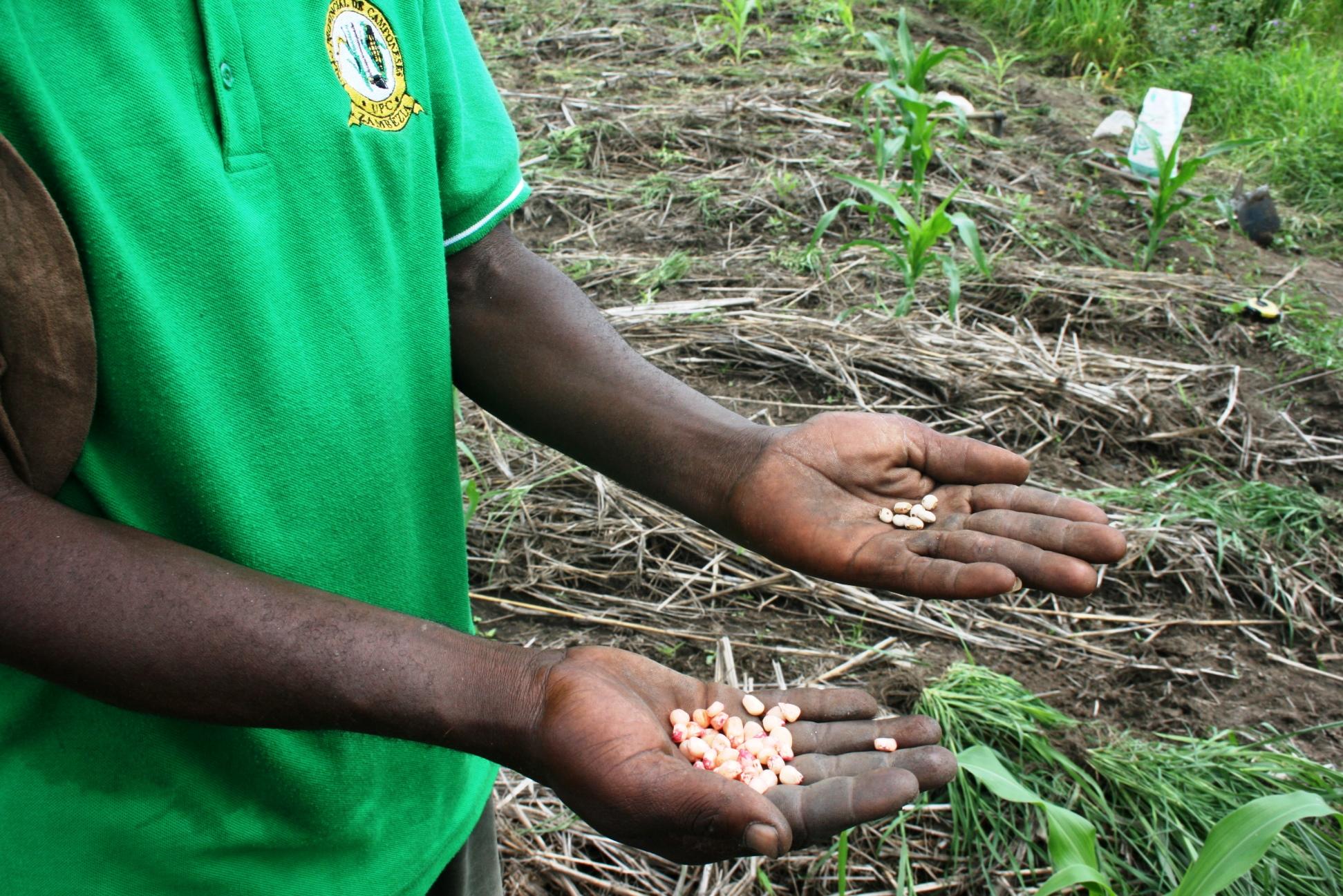 agronomo Mozambico Mani Tese 2017