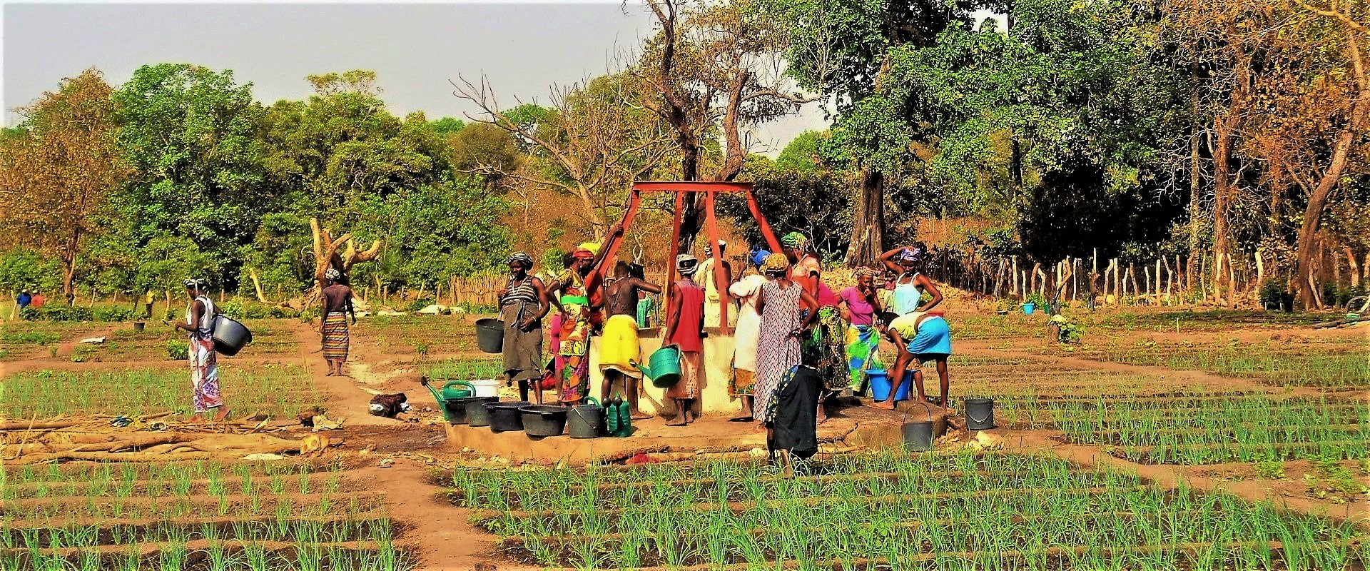 Pozzo_Campi_Donne_Guinea_Bissau_Mani_Tese_2017