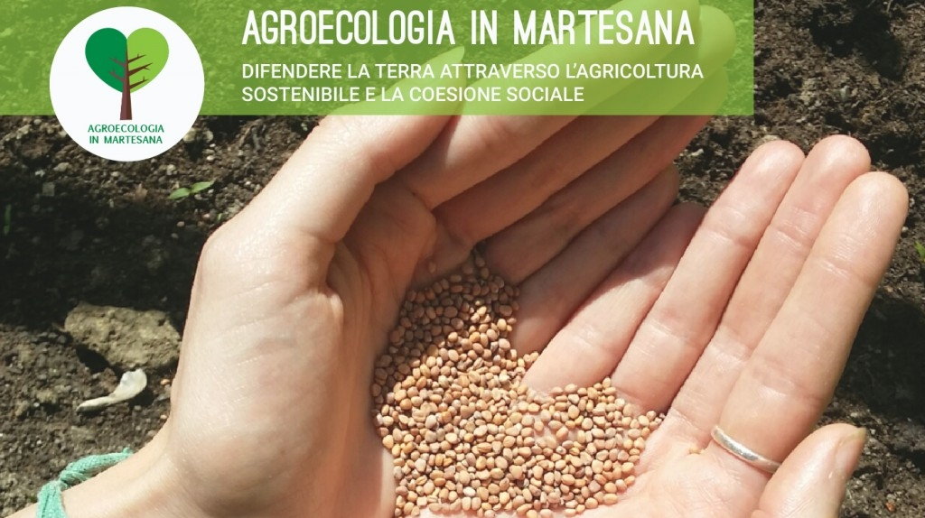 banner-agroecologia