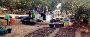 orto comunitario pozzo rifugiati Guinea Bissau Mani Tese 2018
