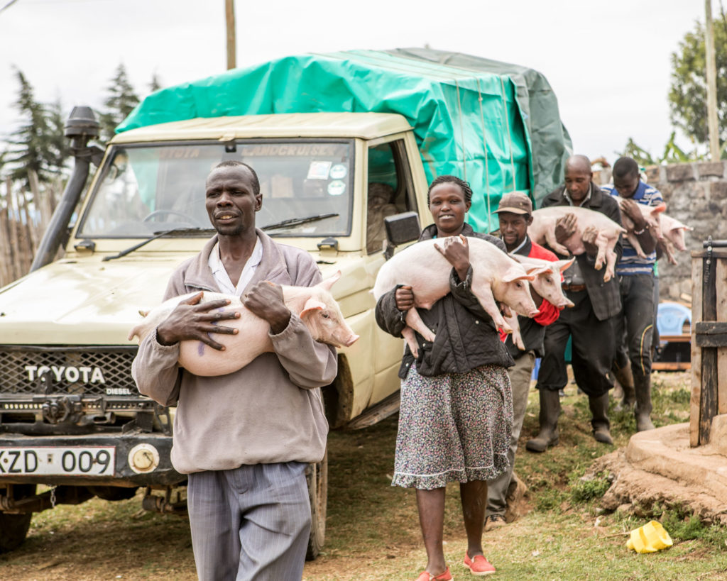 Njoroge Kenya Mani Tese 2018 (3)