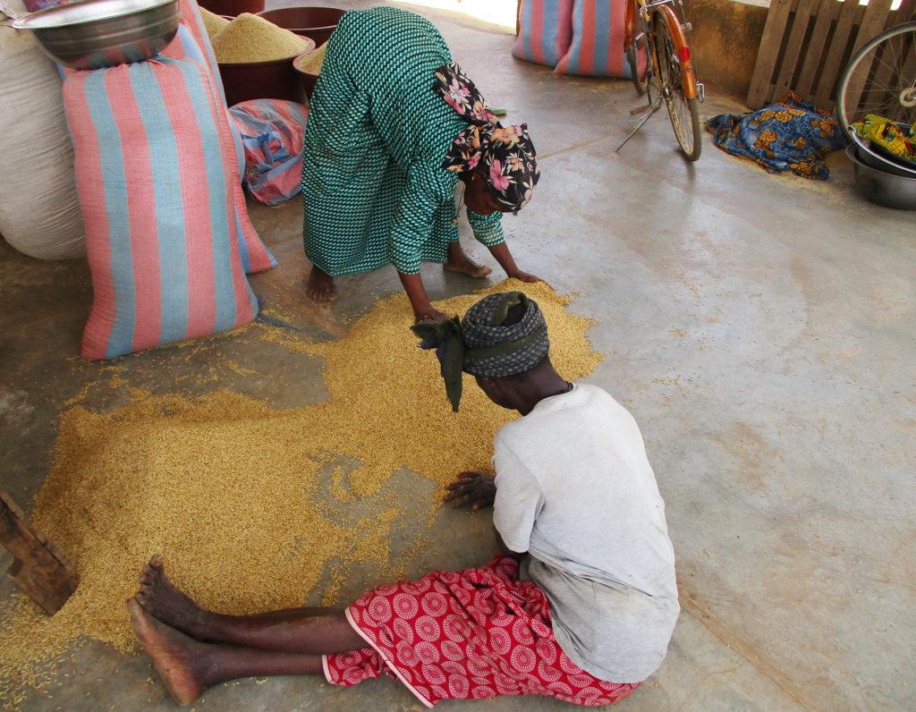 preparazione riso trasformazione donne Burkina Faso Mani Tese 2018