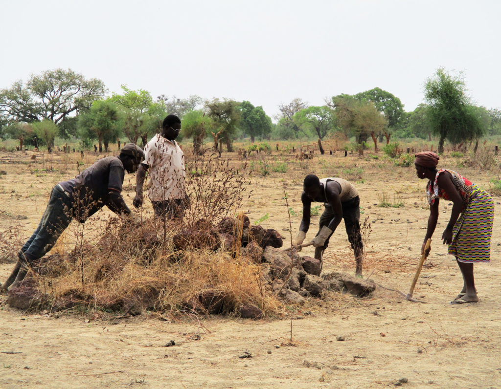 raccolta pietre dighe risaia Burkina Faso Mani Tese 2018