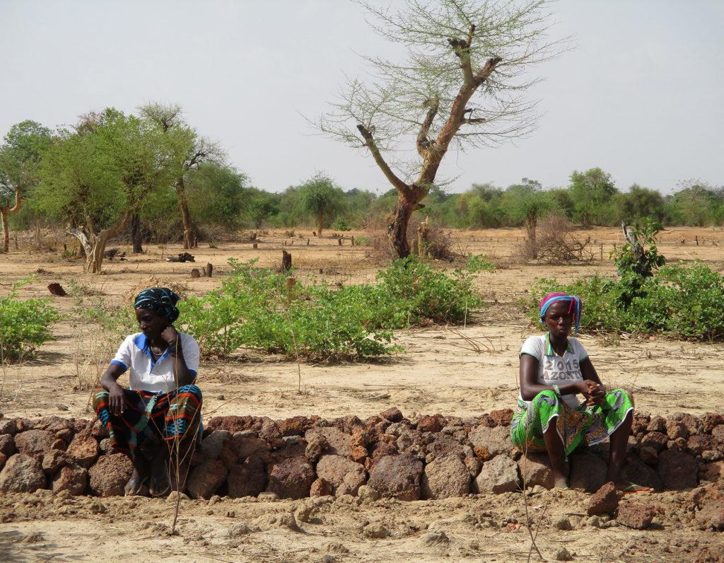 sistemazione risaia donne riso Burkina Faso Mani Tese 2018
