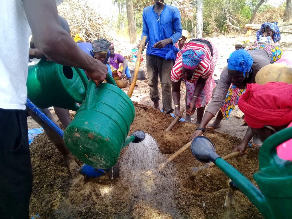 formazione agroecologia orti comunitari Guinea-Bissau Mani Tese 2019 (2)