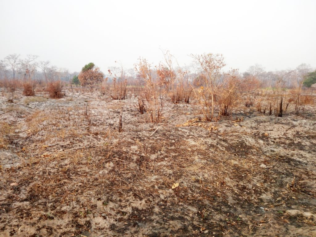 mozambico cambiamenti climatici mani tese 2019 (3)