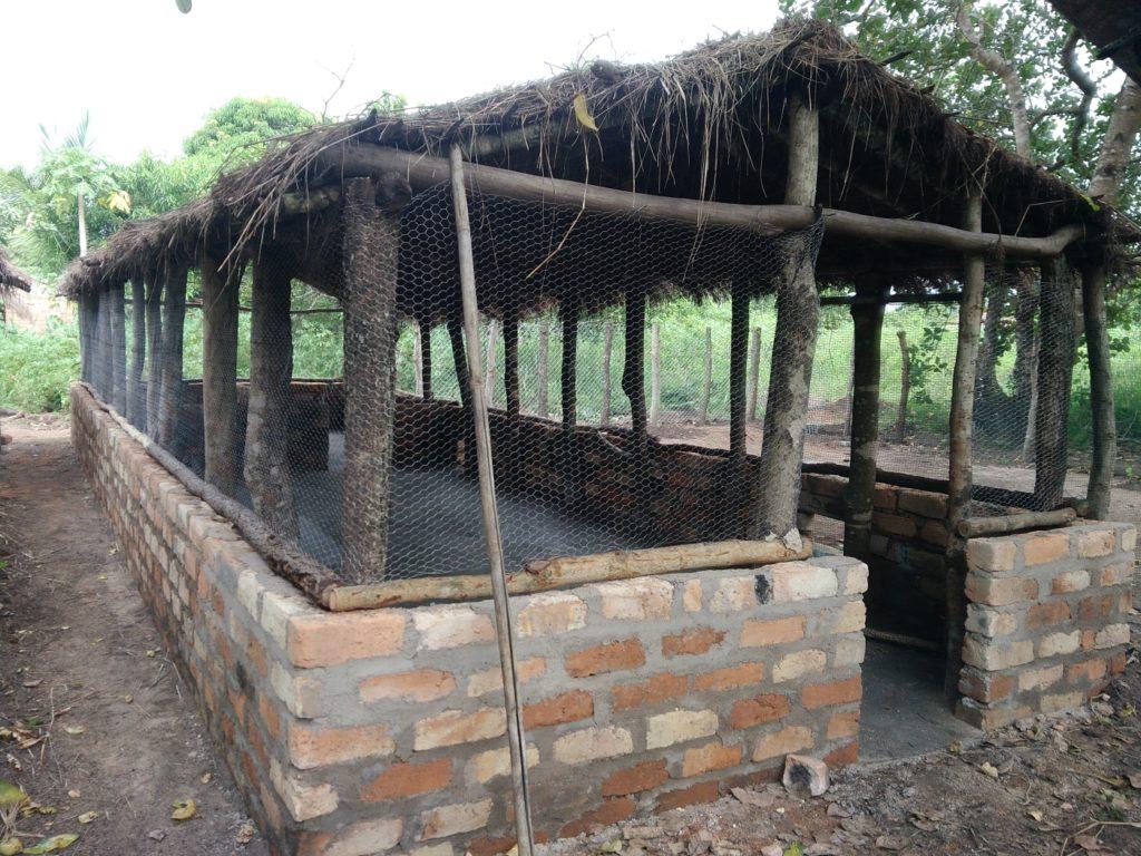 pollaio finito progetto foreste mozambico mani tese 2019