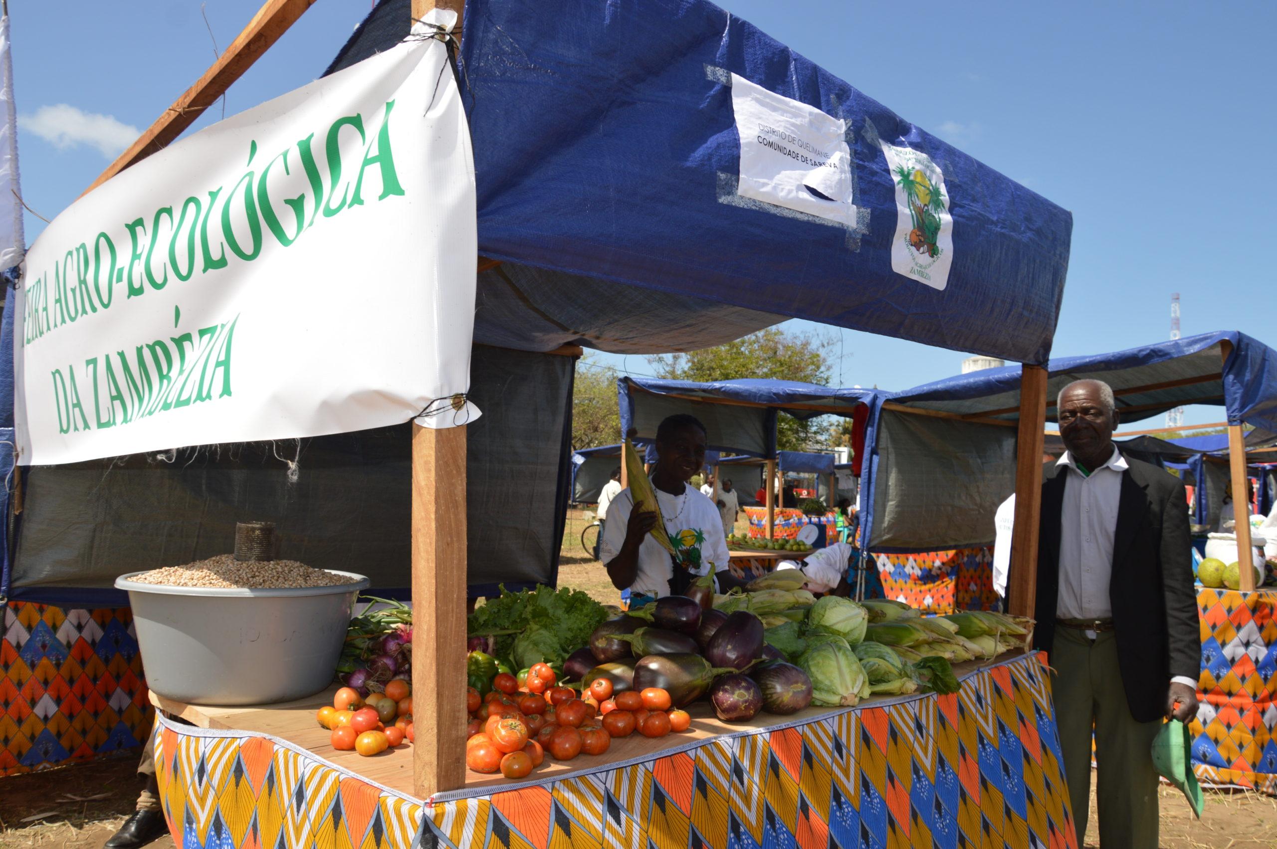 feira agroecologica mozambico mani tese 2019 (2)