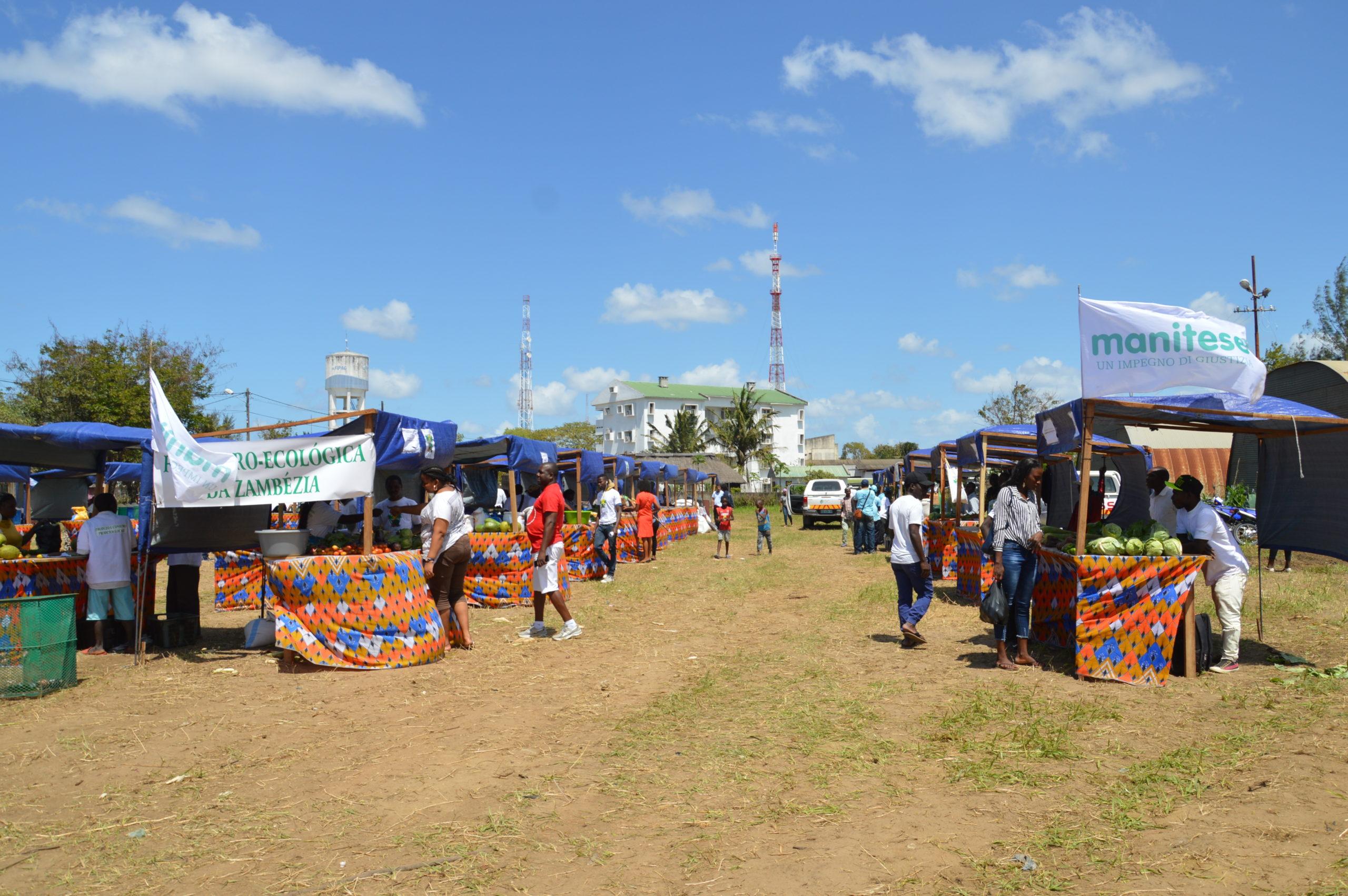 feira agroecologica mozambico mani tese 2019 (3)