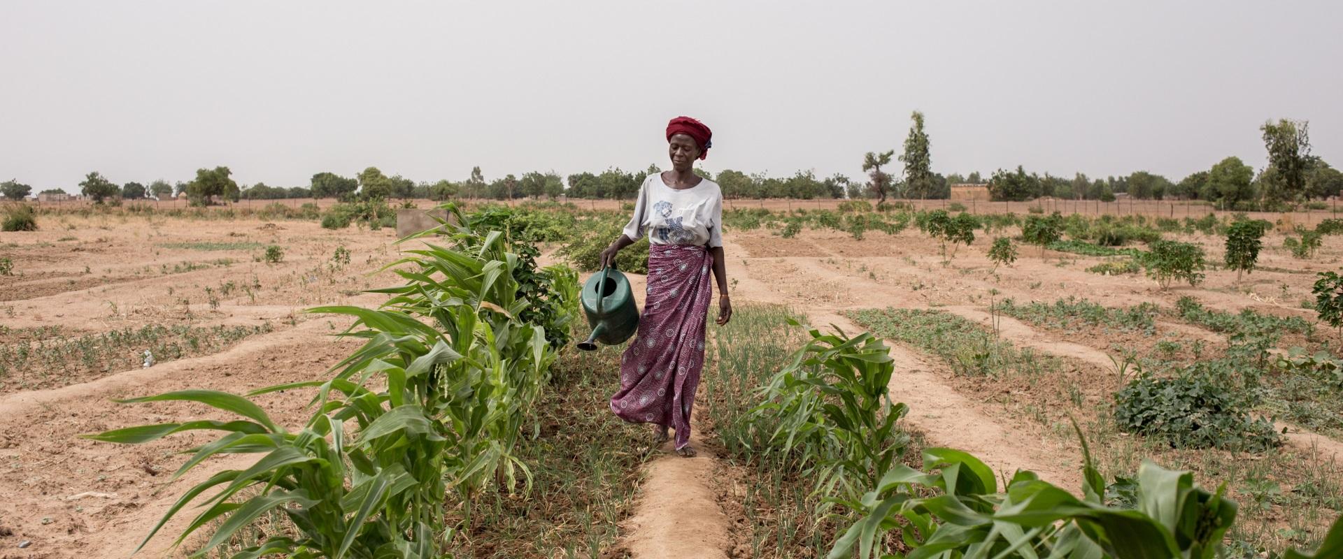 2354 sicurezza alimentare donne giovani mani tese 2019