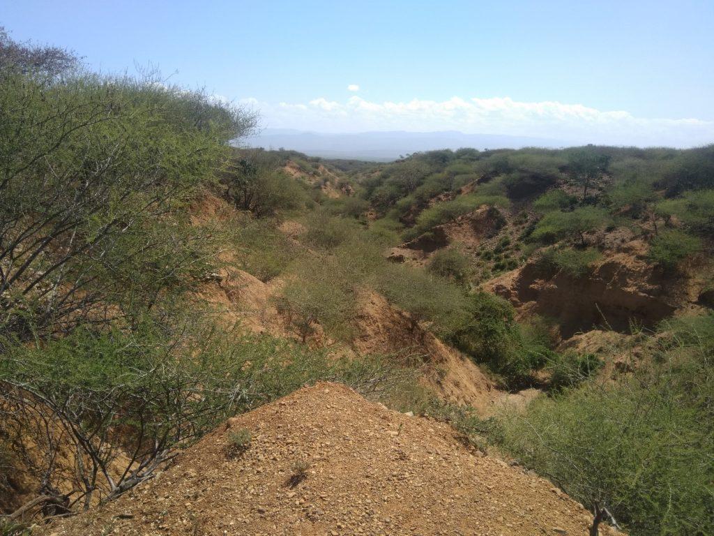 baringo-erosione-mani-tese-2020