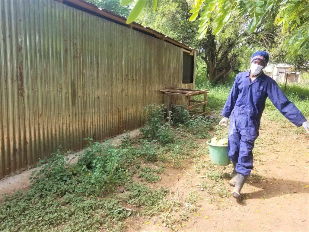 telephone farming la formazione rurale in kenya ai tempi del coronavirus_mani tese 2020