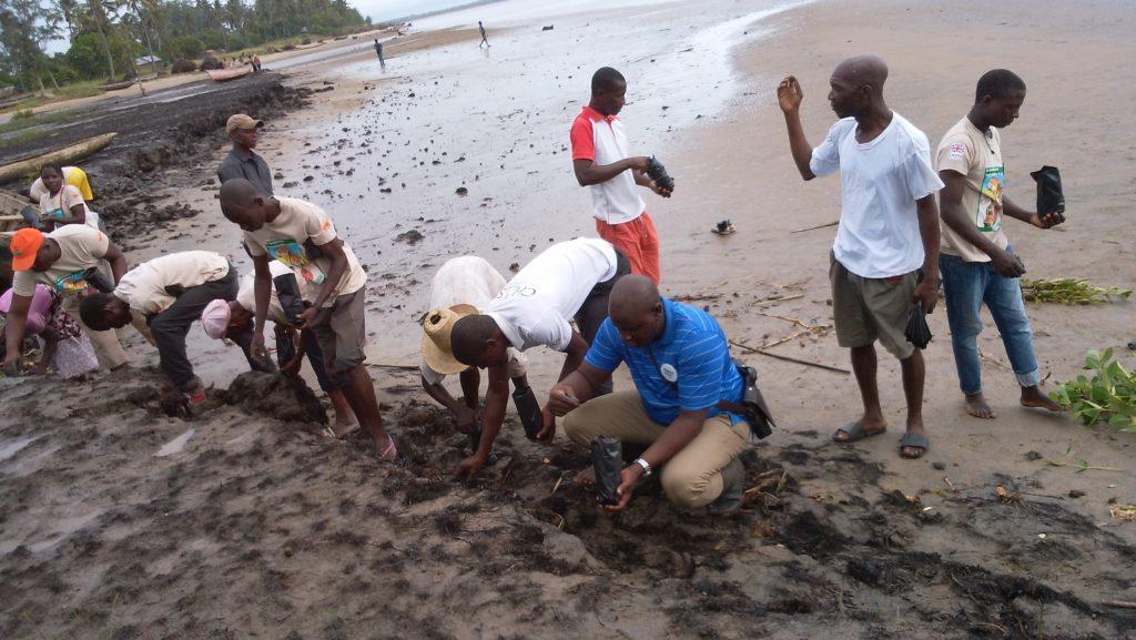 Attività di piantumazione di mangrovie per combattere l'erosione del terreno a Chinde